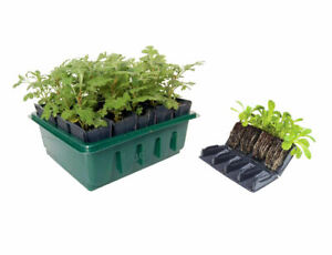 Compact Root Trainer Propagator Set Seed Plug Plant Tray Box 20 Cell 8cm Deep
