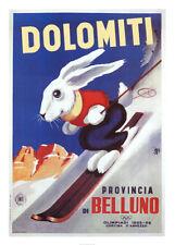 DOLOMITI BUNNY (ITALY c.1955) Vintage Art Deco SKIING Poster Reprint