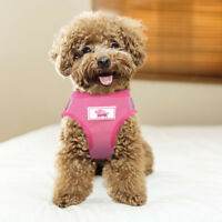 Mesh Small Dog Harness Step-in Puppy Harness Leash Set Pet Jacket Vest DL5