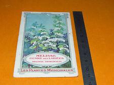 CHROMO 1900-1920 BON POINT ECOLE PLANTE MEDICINALE MELISSE MELISSA OFFICINALIS