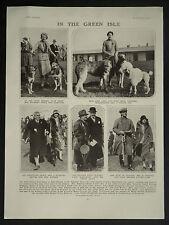 Irish Kennel Club Show Balls Bridge Kildare Point-To-Point 1931 Photo Article