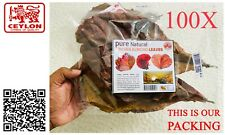 100X Indian Almond Catappa Leaves A-Grade FREE SHIPPING Cheep Price (x100 Leafs)