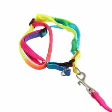 Unbranded Unisex Dog Leashes