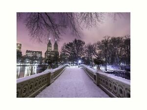 Central park Bow Bridge with Manhattan skyline New York Purple Sky Snow Print