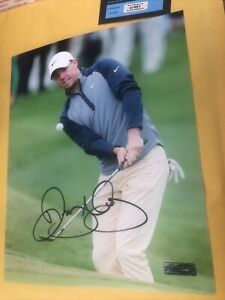 Rory McIlroy Signed Autographed PGA Golf 8x10 Photo COA