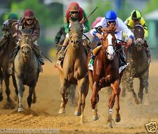 SHACKLEFORD 2011 Preakness Winner Horse Racing 8 x 10 Photo Race