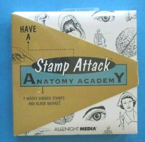Stamp Attack ANATOMY ACADEMY Rubber Stamps RETRO BODY PARTS Nurse SKELETON