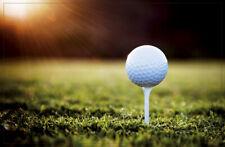 Tapis de Sol Balle Golf à Thé Lavable Paillasson Idéale pour Ventilateurs