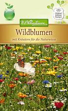 Wildblumen mit Kräutern für die Naturwiese, Bienenweide Samen 5296