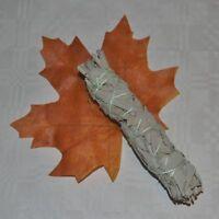 WEISSER SALBEI White Sage Smudge Stick (Salvia apiana) Bündel 25 g € 39,96/100g