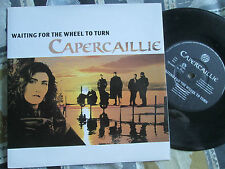 """Capercaillie Waiting For The Wheel To Turn Survival Records ZB 44897 7"""" Single"""