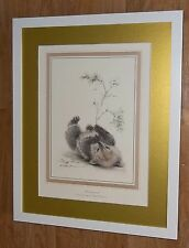 Abandonment - Ralph Thompson print - 20''x16'' frame, 1981 print, bear print