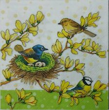BIRD FAMILY ON A FORSYTHIA 2 single LUNCH paper napkins for decoupage  3-ply