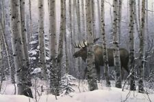 A Walk in the Woods by Stephen Lyman Moose Print 19x13