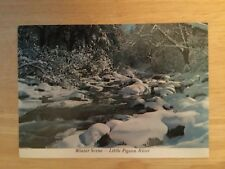 Postcard Unused Tennessee, Sevier County-The Little Pigeon River Winter Scene