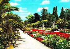 Bad Pyrmont , Palmengarten / Kurpark , Ansichtskarte