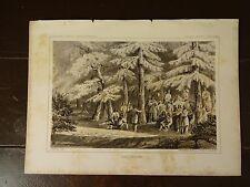 """Lithograph of """"NEZ PERCES"""" /John Mix Stanley / 1860 Railroad Survey Report"""