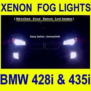 Xenon H8 *FOGLIGHTS* for BMW 428i & 435i Coupe (2014 F32 xDrive) - Jimmy540i.com