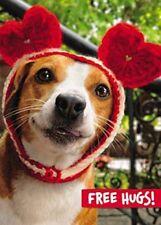 Avanti Valentine's Day Free Hugs Greeting Card Funny Range Cards