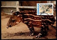 WWF Tapir. Maximumkarte. Nicaragua 1985