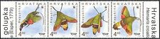 Croatia 2012 WWF/Olive Bee Hawk Moths/Insects/Nature/Conservation 4v set n44785a