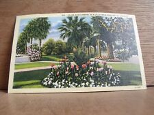 1930-40s America Postcard Palms & Flowers Hollywood California Free UK Post