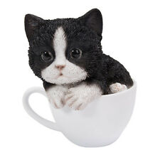 # New TEACUP KITTEN Figurine Statue BLACK & WHITE CAT in Cup Mug Sculpture