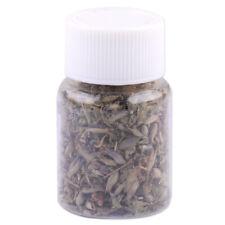 2g Cat Fresh Organic Dried Loose Catnip Leaf & Flower  Nepeta Cataria Digest tu