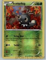2015 pokemon Breakthrough reverse holo Scatterbug 13/162