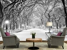 Central Park, NY   Photo Wallpaper Wall Mural DECOR Paper Poster Free Paste