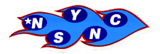Sticker - 'N Sync Blue Flames Boy Band Justin Timberlake 1990s Nsync Decal 23051