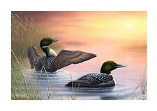 "6 ""Morning Stretch"" Loon 24x16 Canvas Print by Robert Metropulos"
