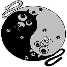 30 Custom Black Cat Yin Yang Personalized Address Labels
