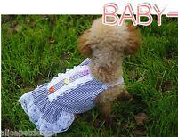 EXKLUSIVES Hundekeid Trachtenmode Dirndl Trachten Design Hund Kleid