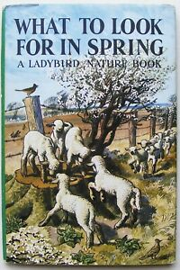 Vintage Ladybird Book – What to look for in Spring & DJ–536–Early Ed–Very Good
