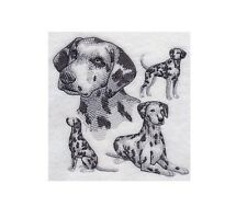 Completed Embroidery Sketch Style Dalmatian Dog