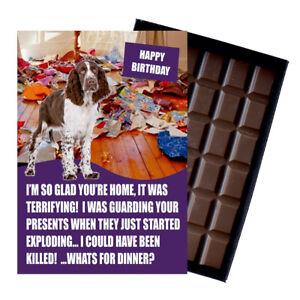 English Springer Spaniel Birthday Card Dog Lover Gift Idea 100g Chocolate Bar