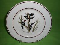 JWK Bavaria John James Audubon Ivory Billed Woodpecker Bird Collector Plate