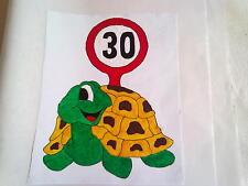 Window Color Bild Schildkröte