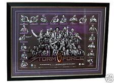 Melbourne Storm 2012 NRL Premiers Sportsprint Framed Licensed Product