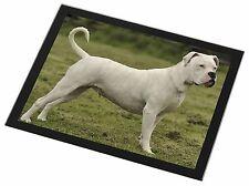 American Staffordshire Bull Terrier Dog Black Rim Glass Placemat Anim, AD-SBT9GP
