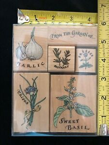 NEW - Scrapbooking and Craft Stamp - Spice Rack Set A3