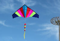 NEW 1.8m 5.9ft Rainbow Triangle Delta Kite Outdoor Fun Sports single line