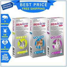 Bravecto Plus For Cats 3 Months flea tick heartworm worm treatment 1 Pipette