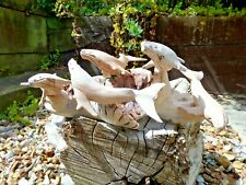 More details for fair trade hand carved made wooden whale beach sea marine fish parasite statue
