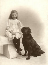 FLAT COATED RETRIEVER CHARMING DOG GREETINGS NOTE CARD DOG & GIRL ON STONE BENCH