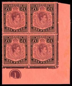 Bermuda 1943 KGVI £1 BROKEN LOWER RIGHT SCROLL Plate 1 block MLH. SG 121c,121ce.
