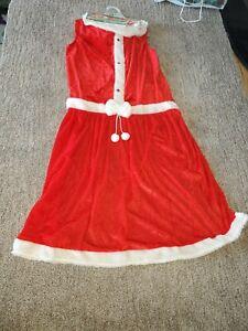 Rubies Big Dog Mrs.Claus Costume XXL
