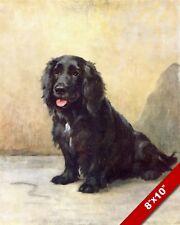 English Cocker Spaniel Pet Dog Portrait Art Painting Print On Real Canvas