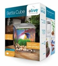 Cube Mini Aquariums